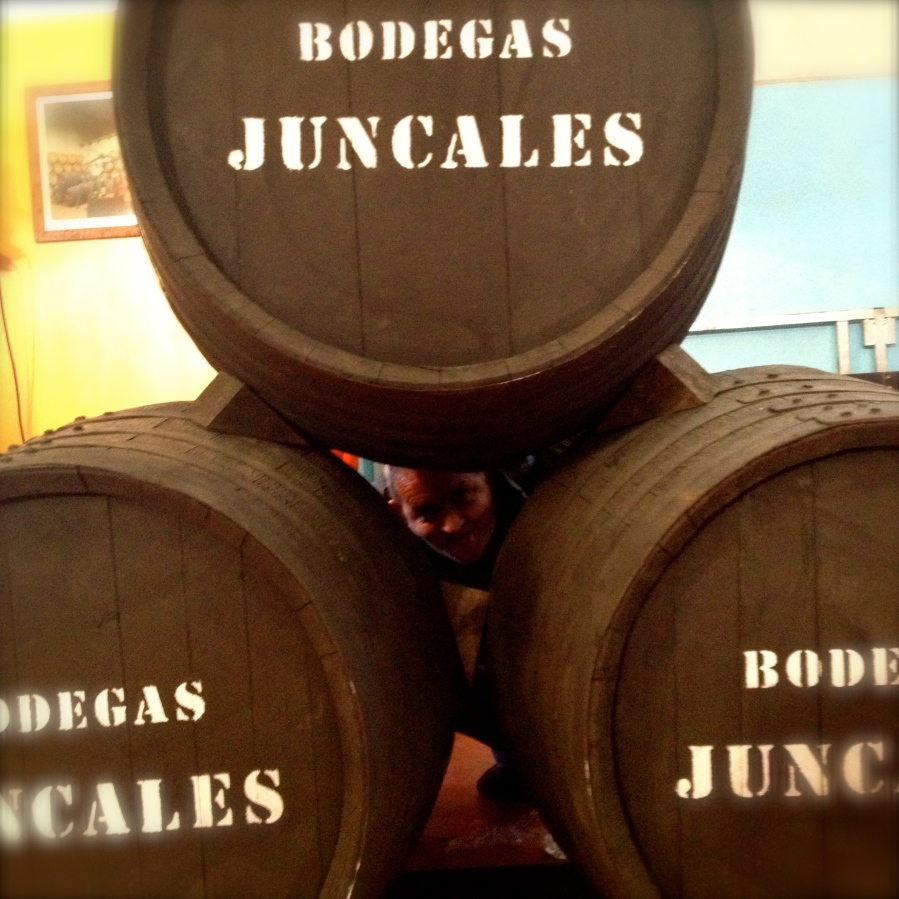Mosto barrels at the feria
